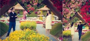 Pre_wedding_dubai_ym15