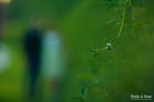 Pre_wedding_dubai_ym3